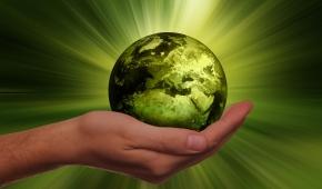 Come rendere sostenibile la tua azienda.